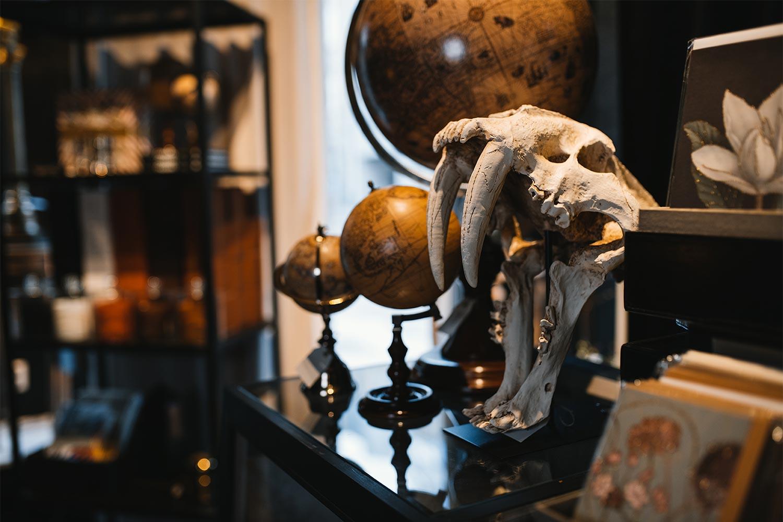 jordglober och konstgjort djurkranium i butiken Atelier 42 i Trollhättan